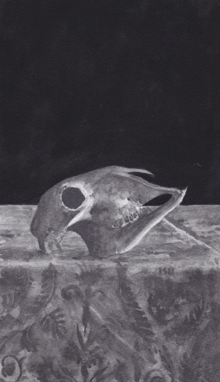 Goat's skull on Patterned Tablecloth - Richard Moon